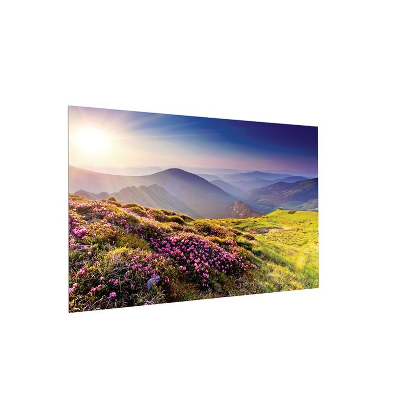 Ecran de proiectie Projecta 150 x 240 FullVision