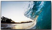 Display Sony 4k FW-65XE8501
