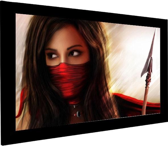 Ecran proiectie videoproiector cu rama fixa Euroscreen Frame Vision V300-D