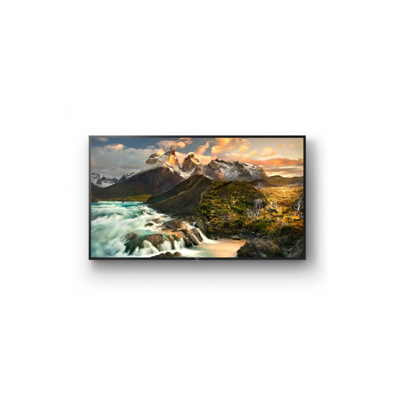 Display 4K Sony FWD-100ZD9501