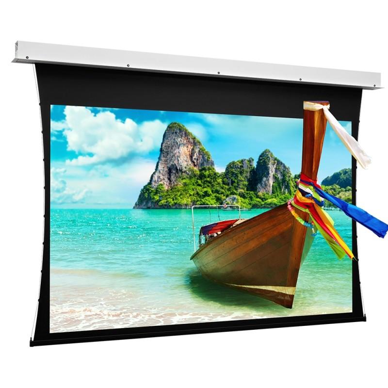 Ecran de proiectie electric tensionat Projecta  191 x 300 HD Progressive 0.9