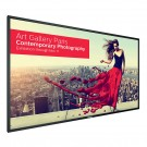 Display Ultra HD 4K  Philips BDL8470QU/00