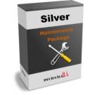 Pachet Mentenanta Silver